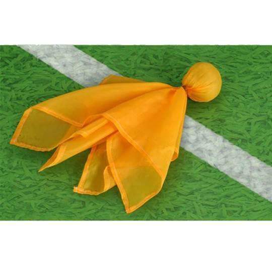 Flag On The Play (1/2)